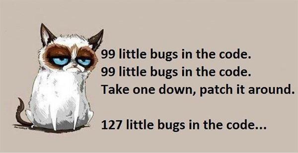 bugs in code cat image