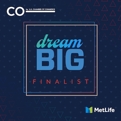 Dream Big Finalist Badge