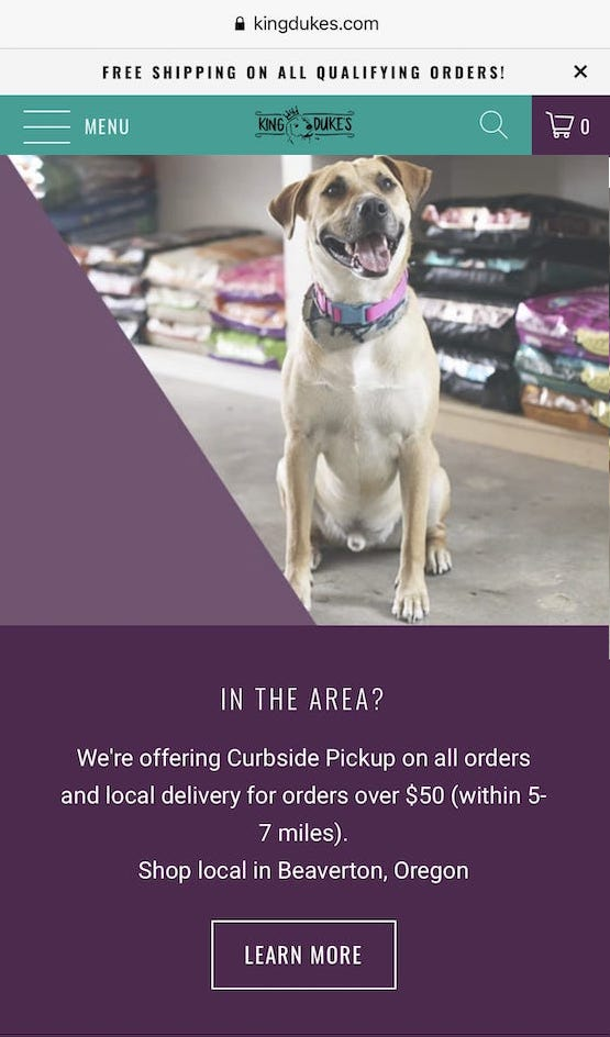 shop local pet store example cta